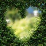 שיעור על תקשור #4: לתקשר זה להסכים לאהבה