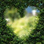 ארבע הדרכים לאהבה