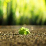 תקשור על דיכאון, חרדה ואופטימיות